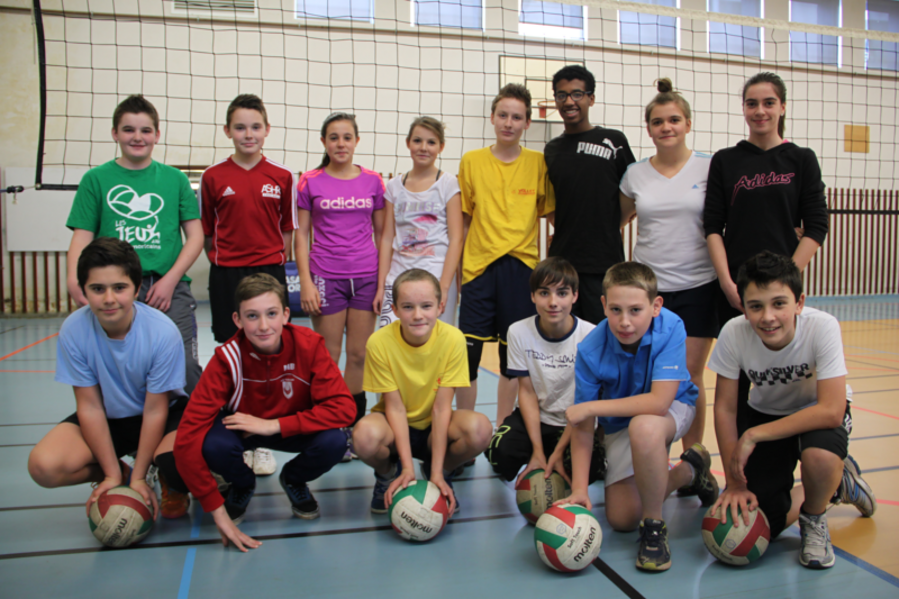 Section sportive volley-ball