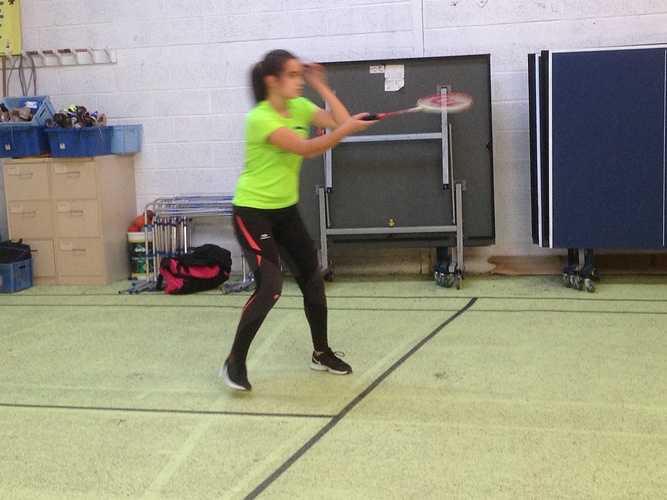 District de badminton à Saint-Brieuc 0